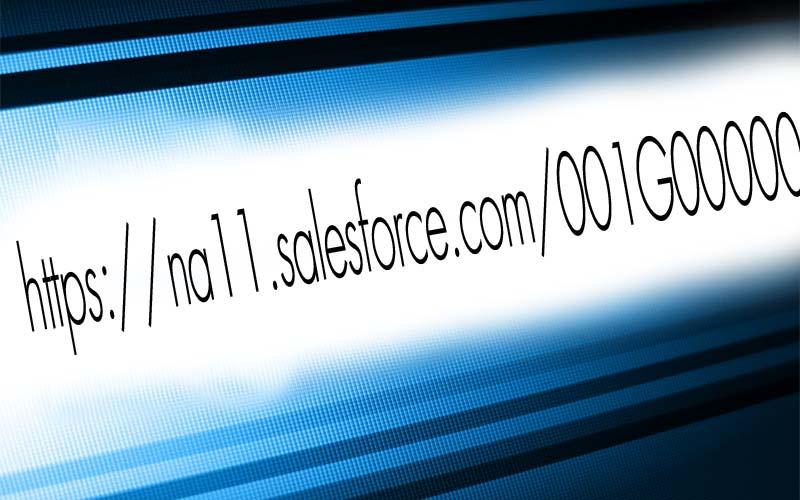 salesforce.com URL